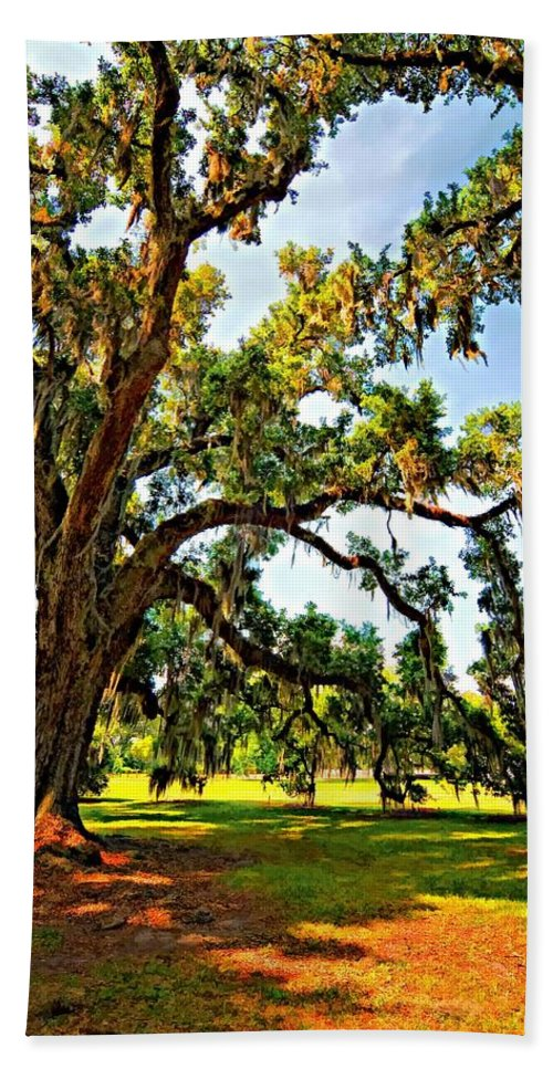 Evergreen Plantation Beach Towel featuring the photograph Southern Comfort Painted by Steve Harrington