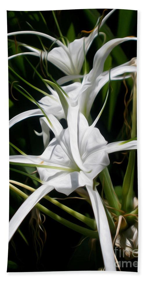 Photography Beach Towel featuring the photograph Spider Lily by Kaye Menner