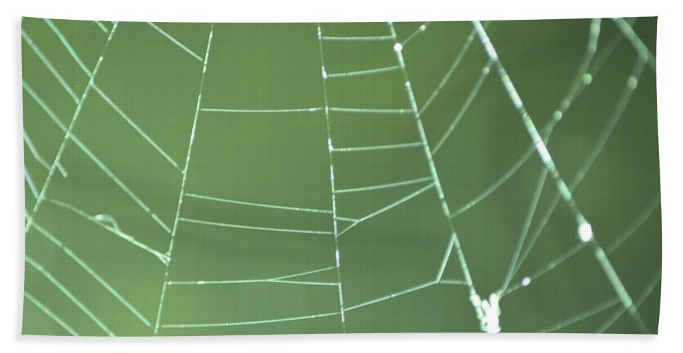 Abstract Beach Towel featuring the photograph Spiderweb 3 by Brent Dolliver