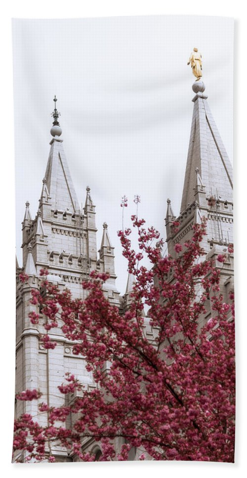 Spring At The Temple Beach Towel featuring the photograph Spring At The Temple by Chad Dutson