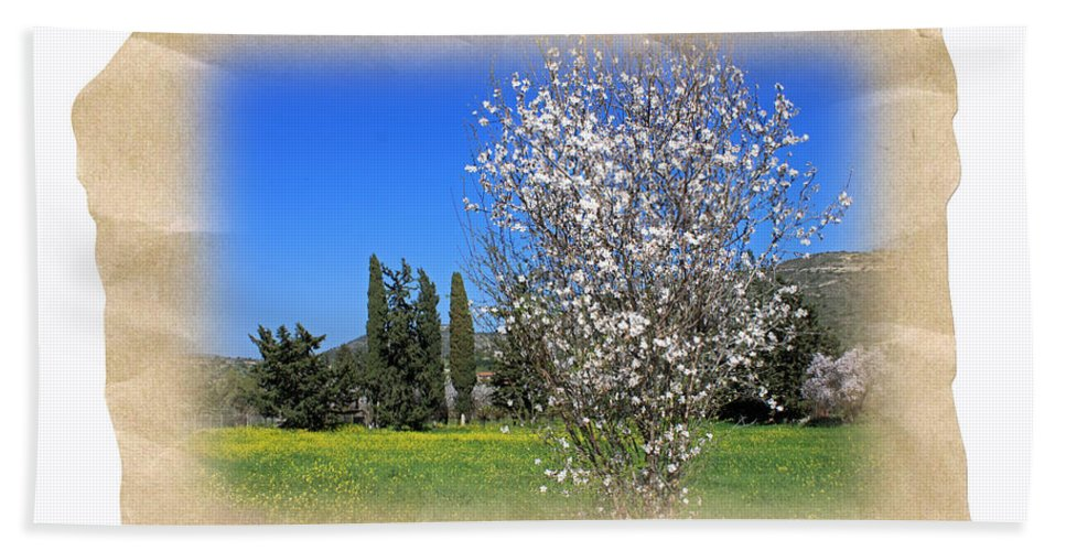 Augusta Stylianou Beach Towel featuring the photograph Spring In The Paper by Augusta Stylianou