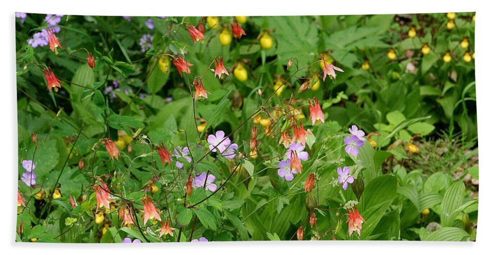 Flower Beach Towel featuring the photograph Spring On The Forest Floor by Susan Herber