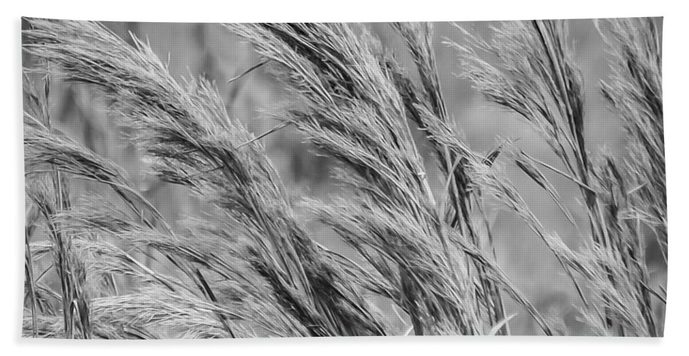 Field Beach Towel featuring the photograph Springtime In The Field - Bw by Carolyn Marshall