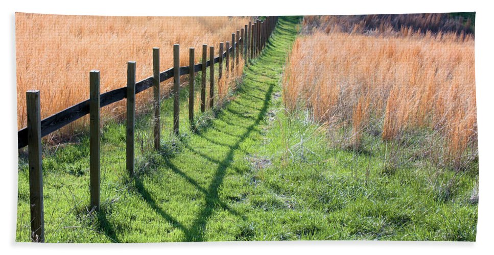 Spring Beach Towel featuring the photograph Springtime Pasture by Kristin Elmquist