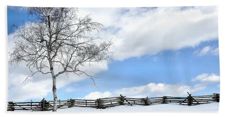 Tree Beach Towel featuring the photograph Standing Alone by Todd Hostetter