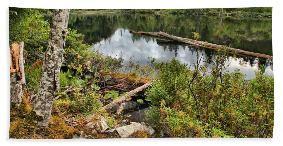 Starvation Lake Beach Towel featuring the photograph Starvation Lake Reflections by Adam Jewell