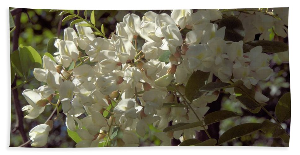 Flower Beach Towel featuring the photograph Stem Of Locust Flowers by Valerie Kirkwood
