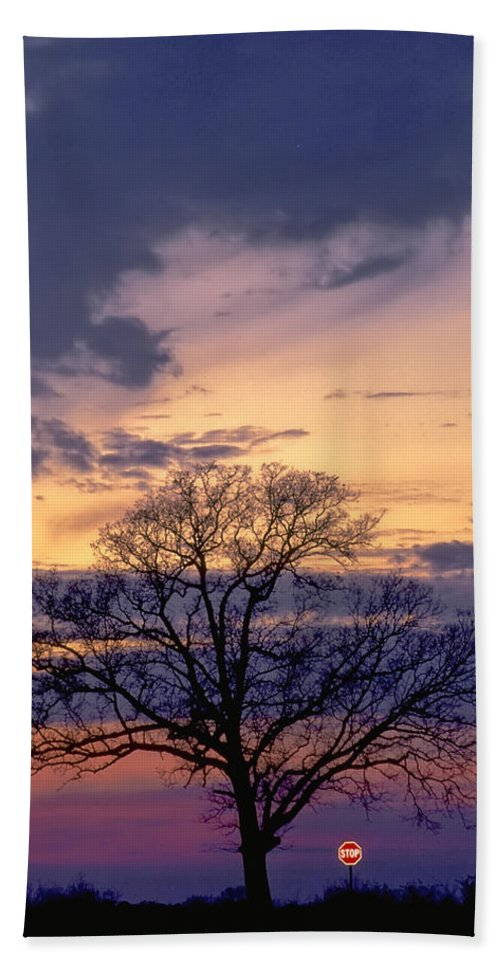 Tree Beach Towel featuring the photograph Stop by David and Carol Kelly