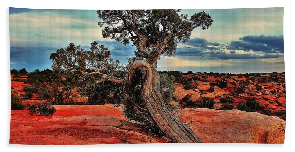 Canyonlands Beach Towel featuring the photograph Strength by Benjamin Yeager