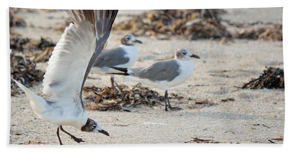 Strutting Beach Towel featuring the photograph Strutting Seagull On The Beach by Patricia Twardzik