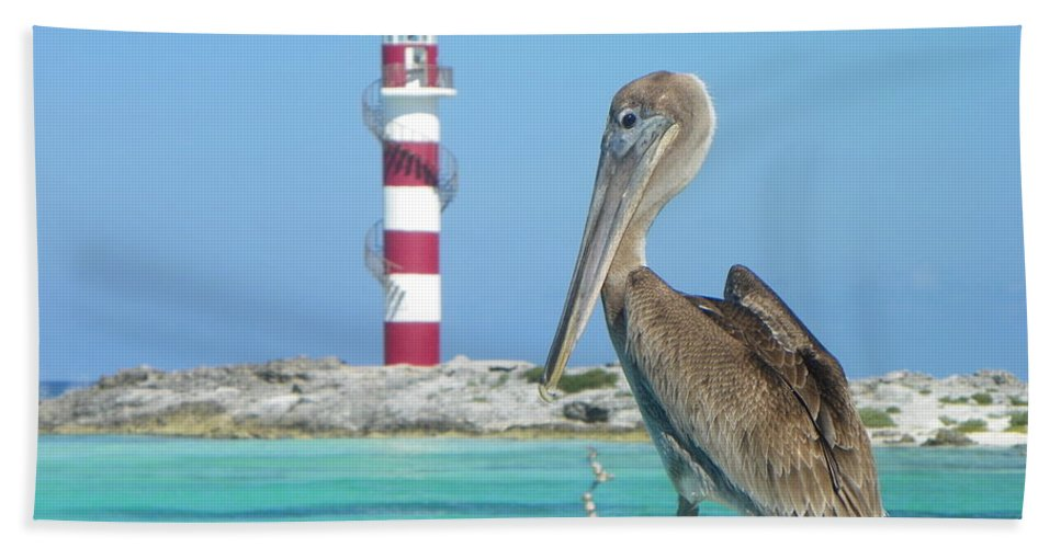 Nature Beach Towel featuring the photograph Stumped by Paul Smith