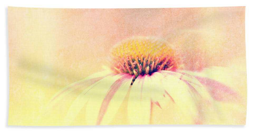 Flower Beach Towel featuring the photograph Summer In A Day by Bob Orsillo