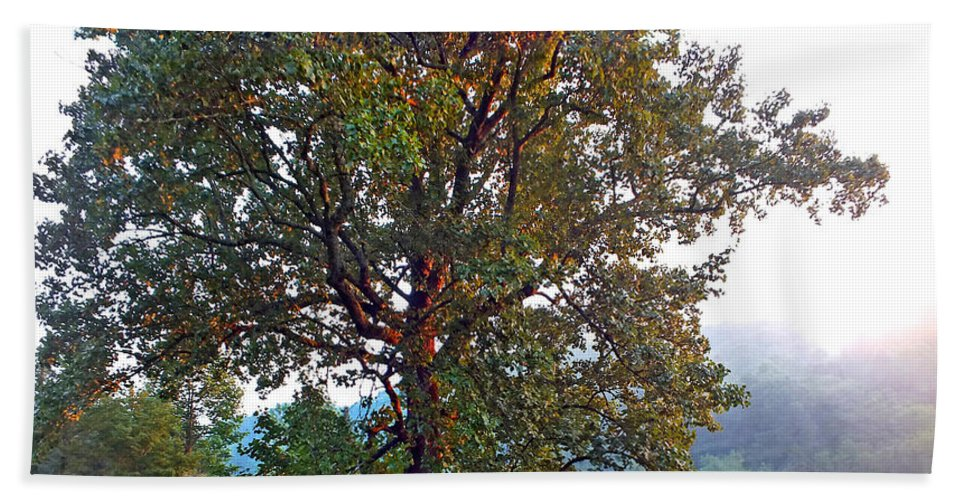 Duane Mccullough Beach Towel featuring the photograph Summer Poplar Tree Filtered by Duane McCullough