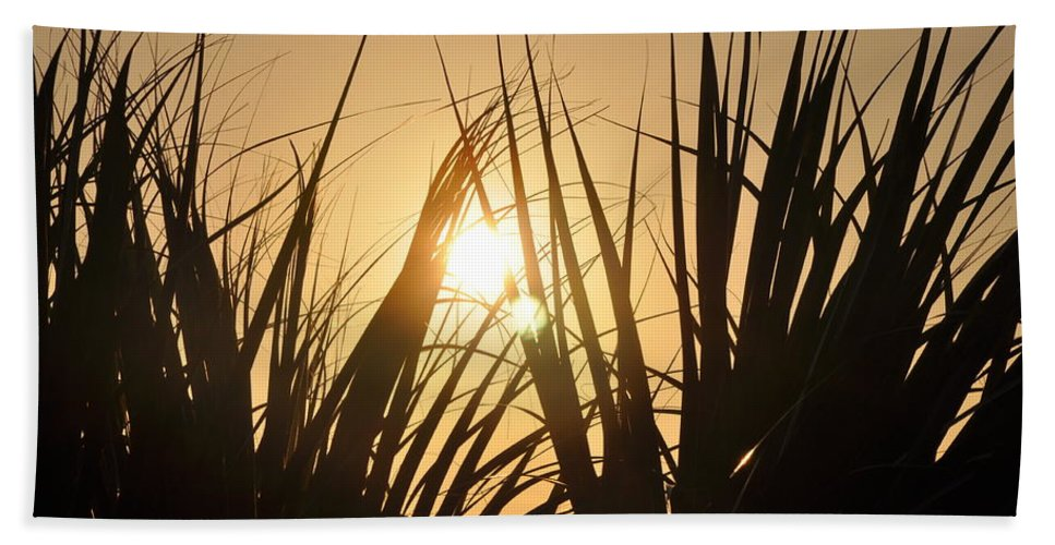 Sundown Beach Towel featuring the photograph Sundown Through The Grass by Bill Cannon