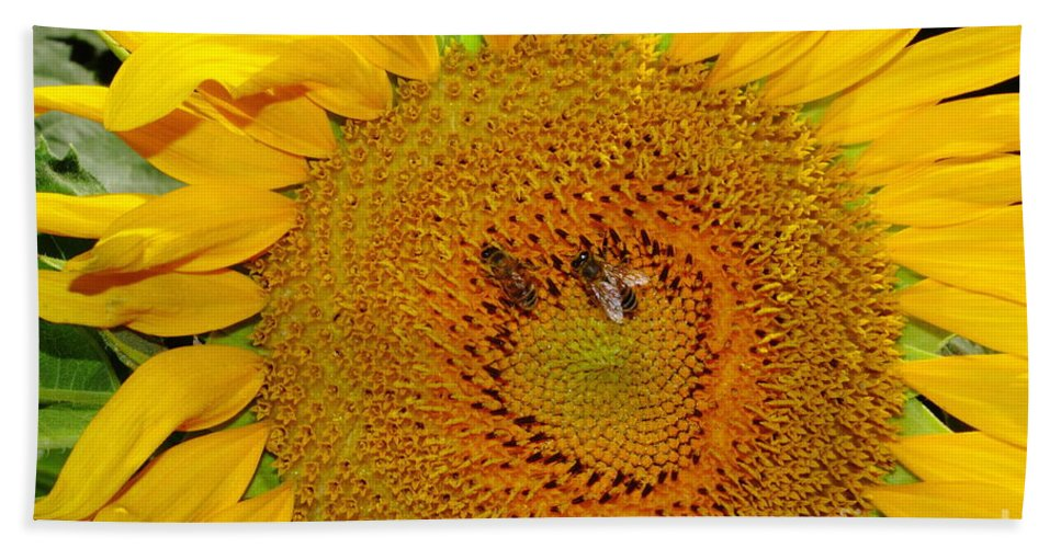 Sunflower Beach Towel featuring the photograph Sunflower And Bees by Robert Frederick