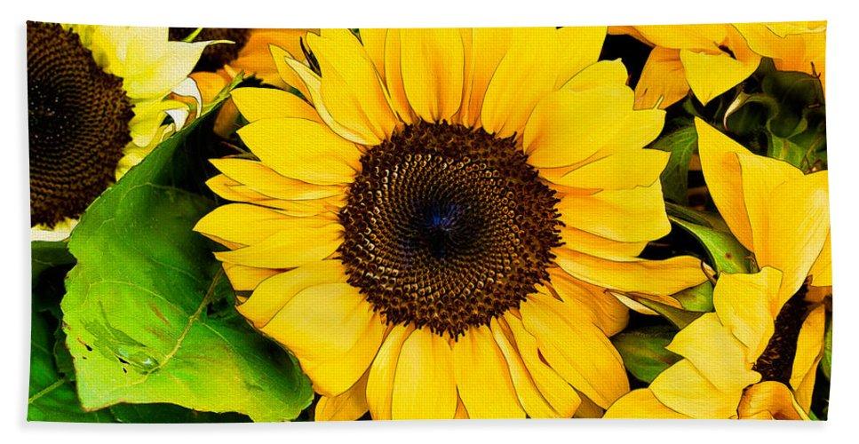 Sunflower Beach Towel featuring the photograph Sunflower by David Kay