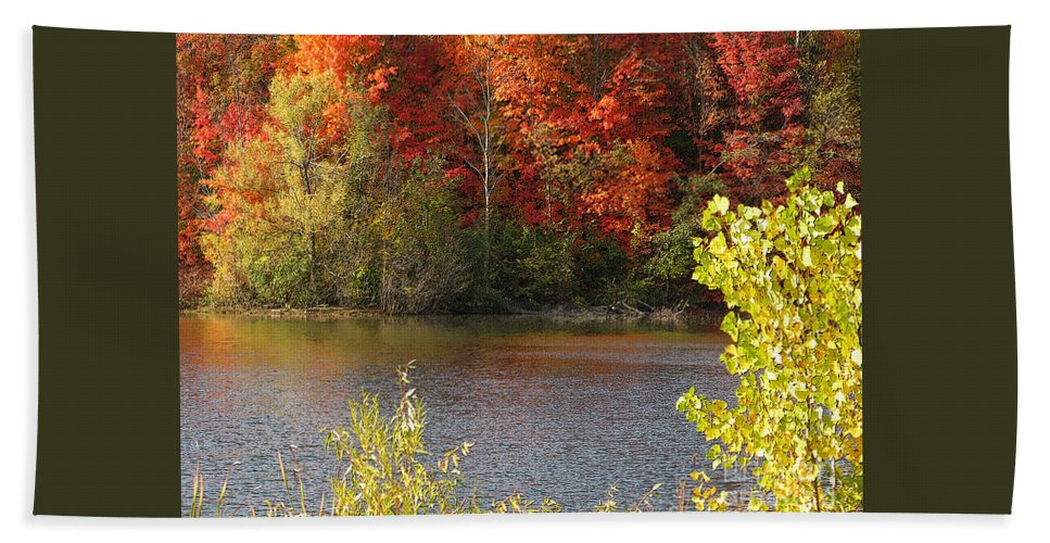 Autumn Beach Towel featuring the photograph Sunlit Autumn by Ann Horn