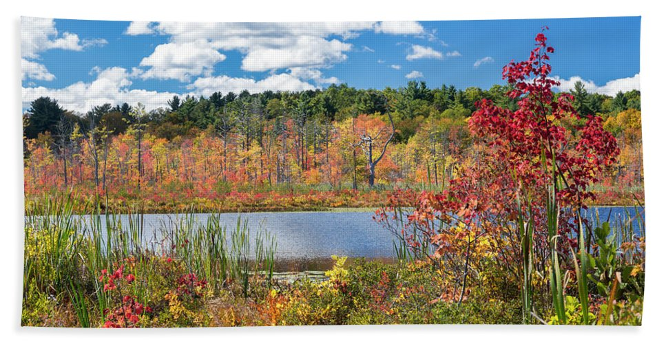 Autumn In New England Beach Towel featuring the photograph Sunny Fall Day by Bill Wakeley