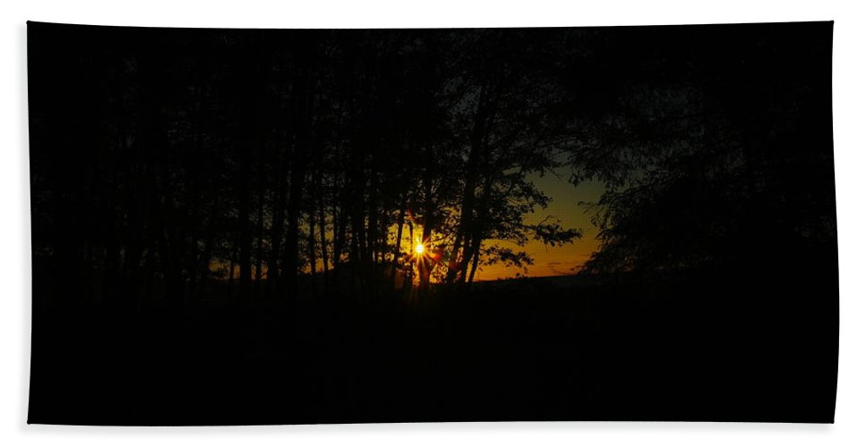 Forest Beach Towel featuring the photograph Sunrise Through The Forest by Jeff Swan