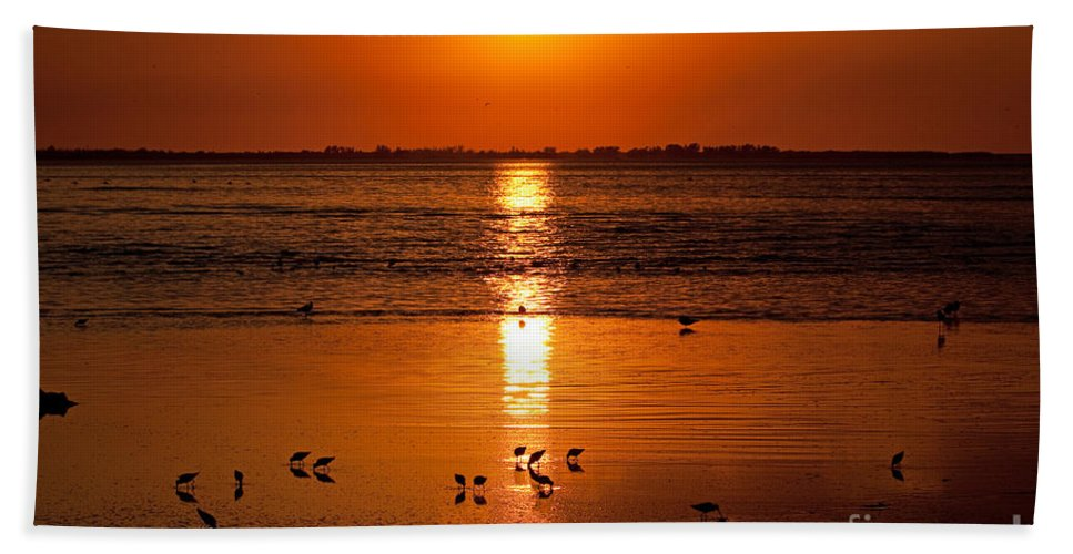 Sunset Beach Towel featuring the photograph Sunset With The Birds Photo by Meg Rousher