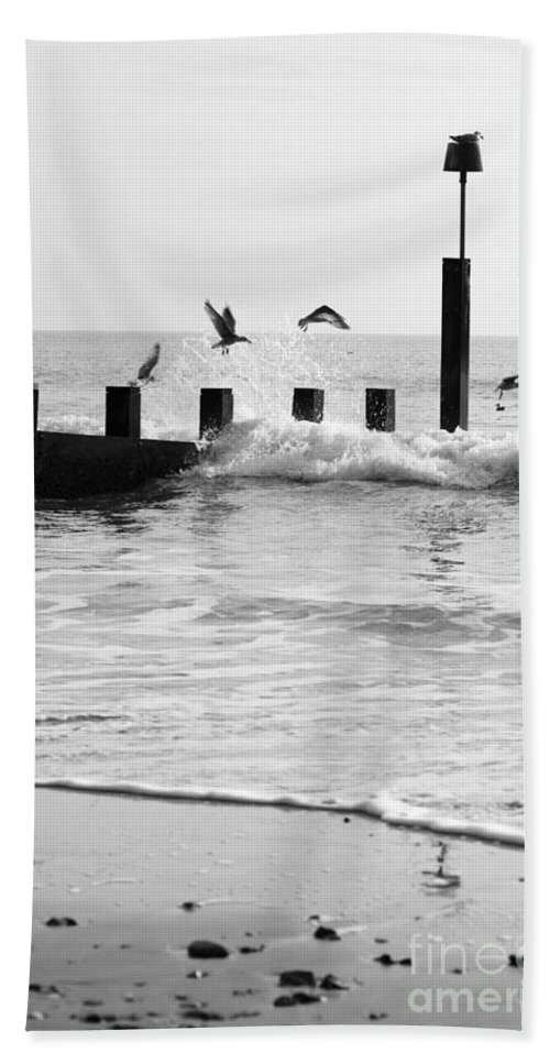 Autumn Beach Towel featuring the photograph Surprised Seagulls by Anne Gilbert