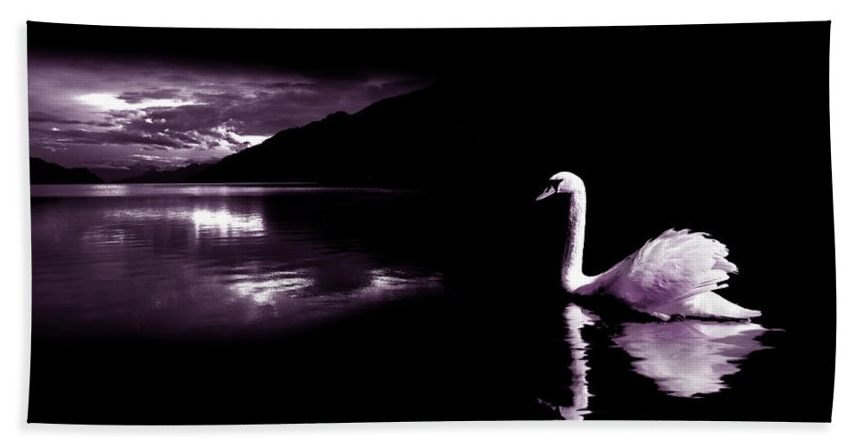 Swan Beach Towel featuring the photograph Swan Lake by Mal Bray
