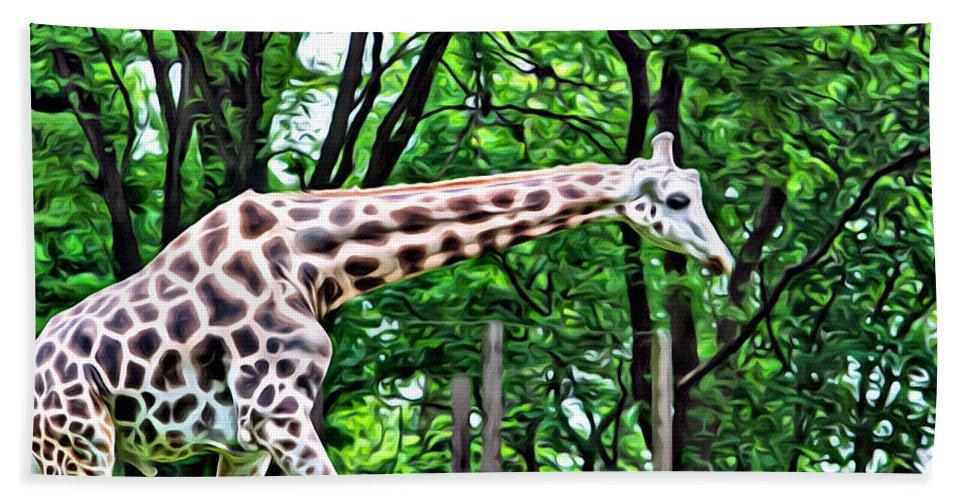 Giraffe Beach Towel featuring the photograph Sweet Giraffe by Alice Gipson
