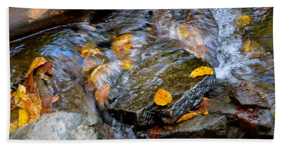 Leaves Beach Towel featuring the photograph Swirling Stream Of Leaves by Patricia Twardzik