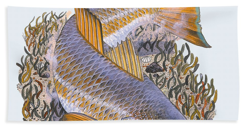 Redfish Beach Towel featuring the painting Tailing Redfish by Carey Chen