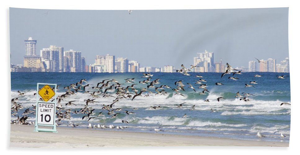 Birds Beach Towel featuring the photograph Terns On The Move by Deborah Benoit