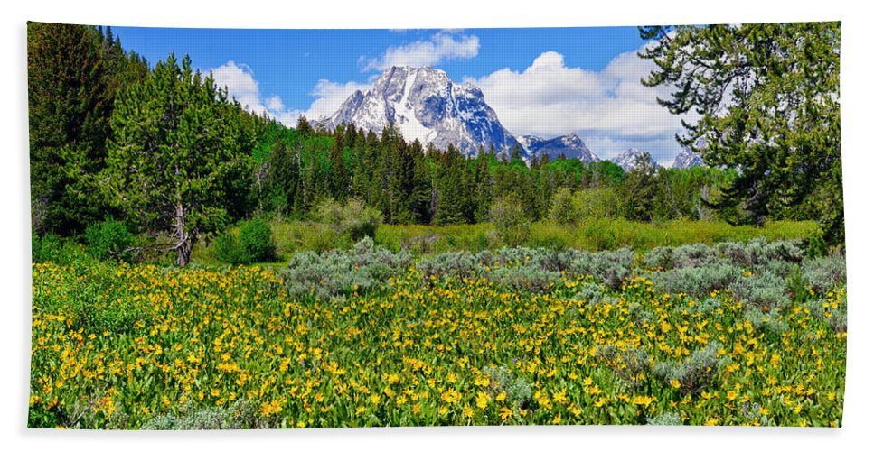 Grand Teton National Park Beach Towel featuring the photograph Teton Wildflowers by Greg Norrell