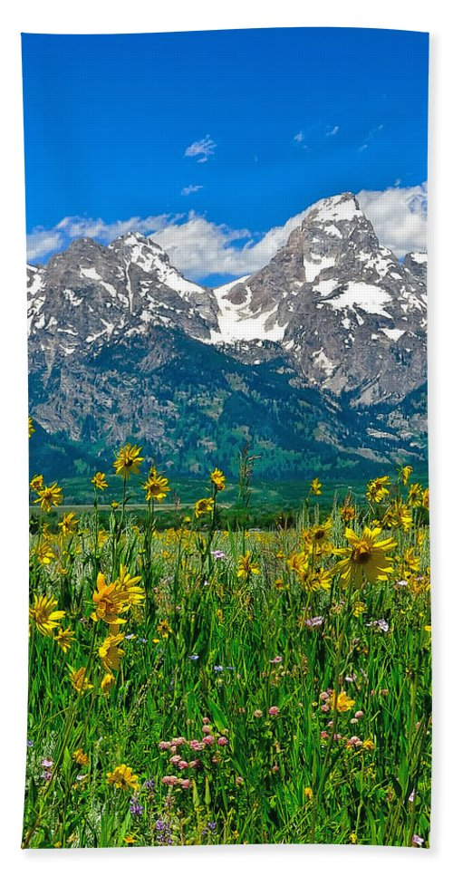 Tetons Peaks And Flowers Beach Towel featuring the photograph Tetons Peaks And Flowers Center Panel by Greg Norrell