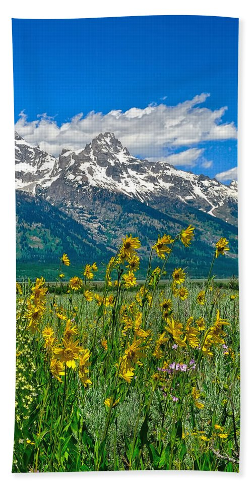 Tetons Peaks And Flowers Beach Towel featuring the photograph Tetons Peaks And Flowers Right Panel by Greg Norrell