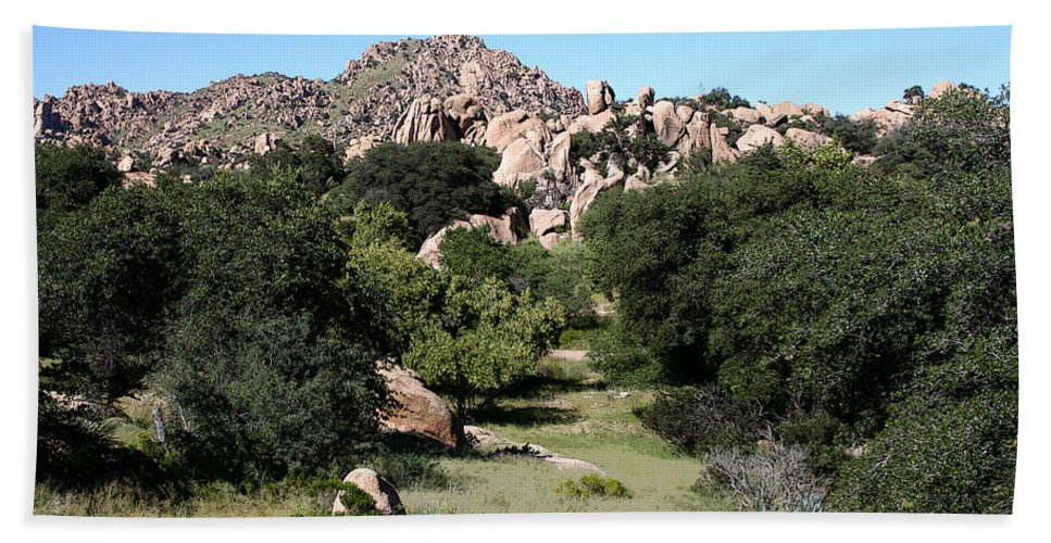 Texas Canyon Beach Towel featuring the photograph Texas Canyon Landscape by Joe Kozlowski