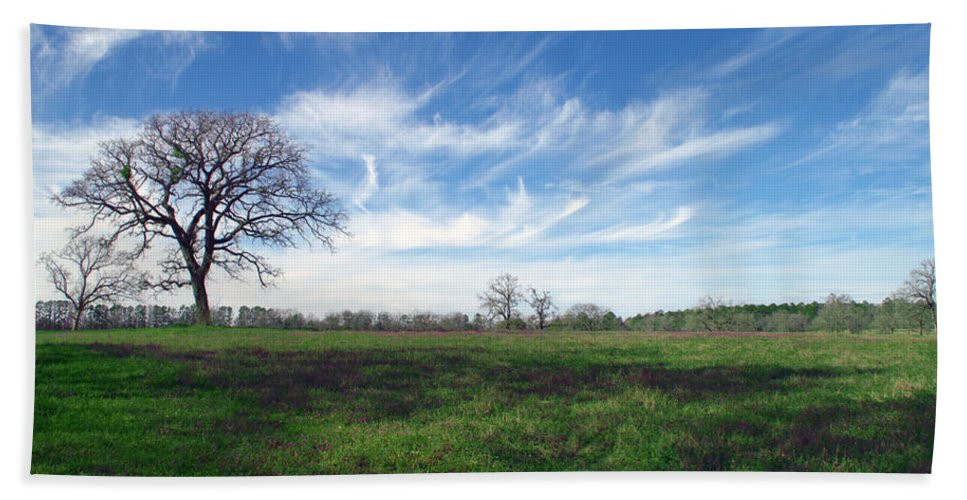 Wispy Clouds In The Texas Sky Huntsville Tx Texas Tree Trees Fine Art Beach Towel featuring the photograph Texas Sky by Brian Harig