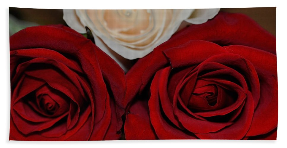 Rose Beach Towel featuring the photograph The Beauty Of Three by Teri Schuster