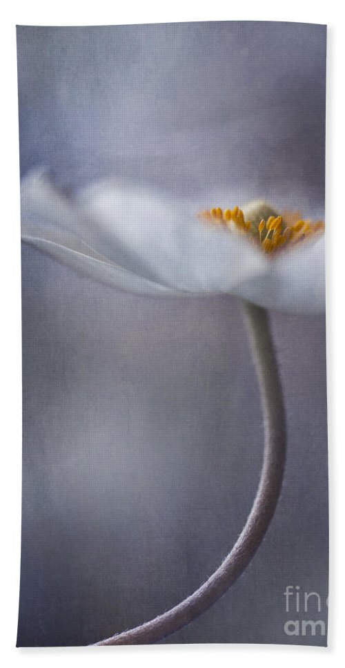 Flower Beach Towel featuring the photograph The Beauty Within by Priska Wettstein