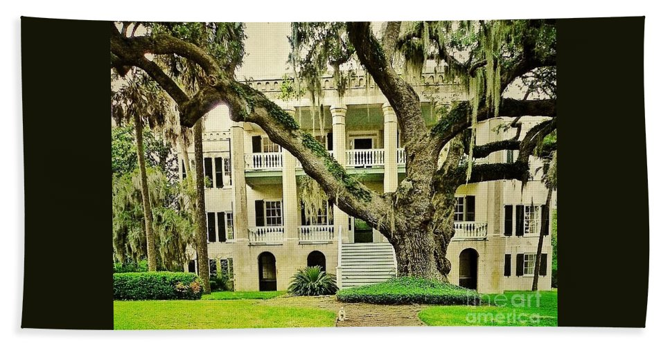 Oak Trees Beach Towel featuring the photograph The Cat Guarding The Castle by Patricia Greer