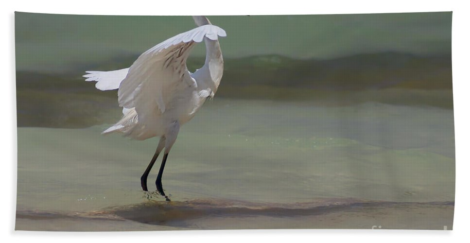 Egret Beach Towel featuring the photograph The Dance by John Edwards