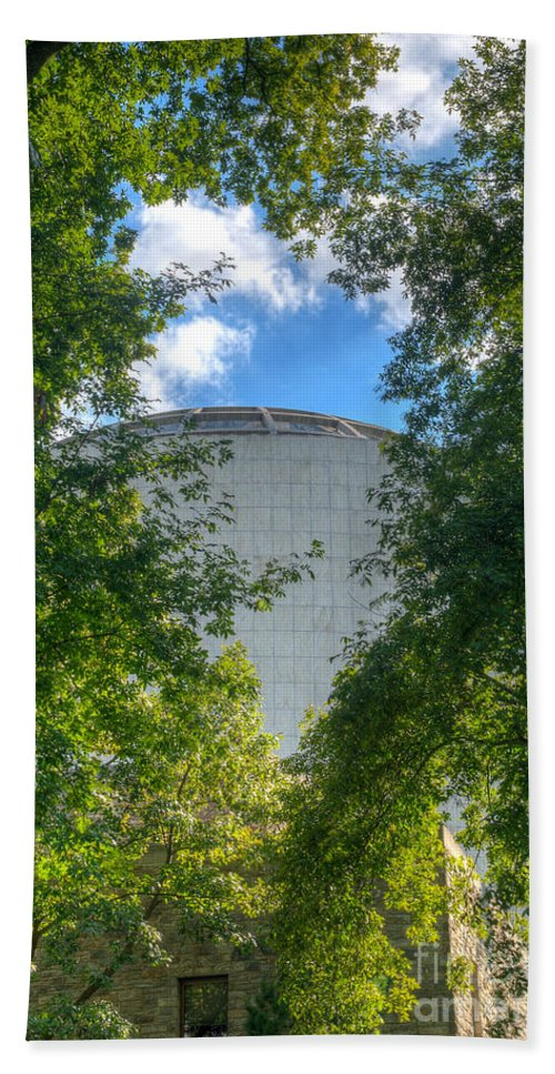 Founders Beach Towel featuring the photograph The Dome by Mark Dodd