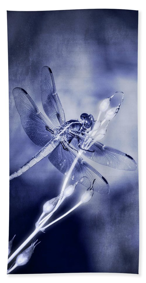 Dragonfly Beach Towel featuring the photograph The Dragonfly by Saija Lehtonen