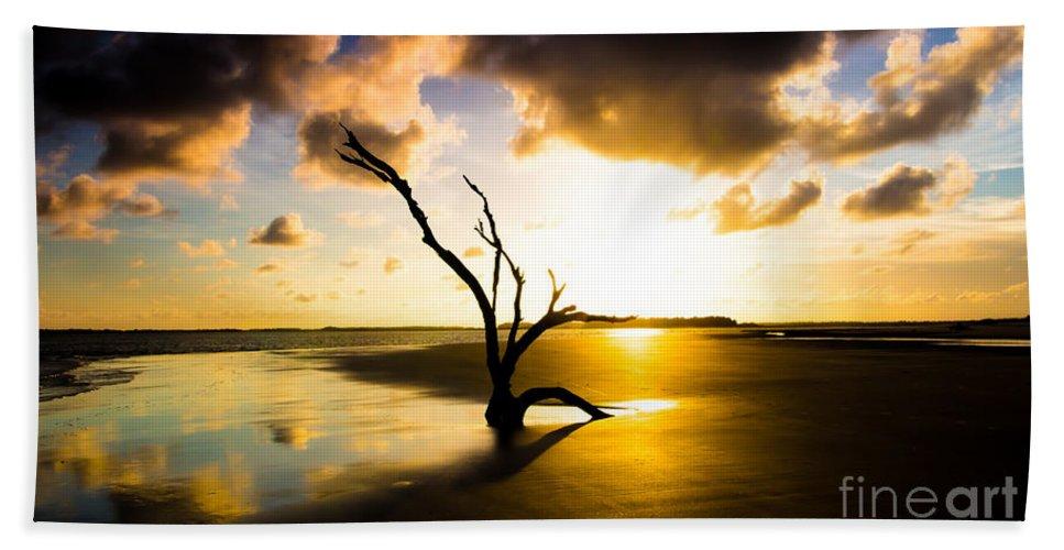 South End Folly Beach Beach Towel featuring the photograph The Driftwood Tree Folly Beach by Donnie Whitaker