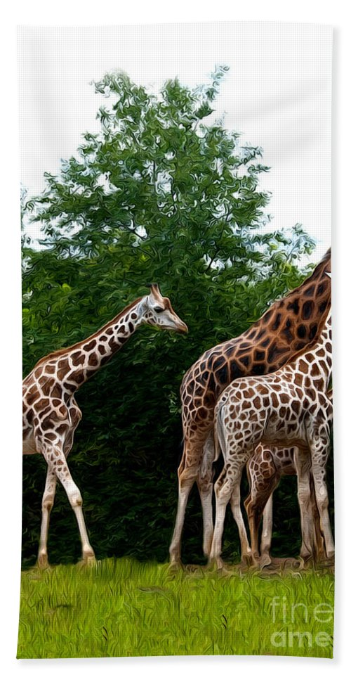 Giraffe Beach Towel featuring the photograph The Extended Family by Sheila Laurens
