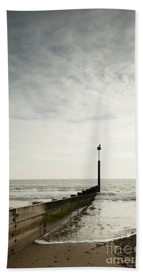 Autumn Beach Towel featuring the photograph The Groyne by Anne Gilbert