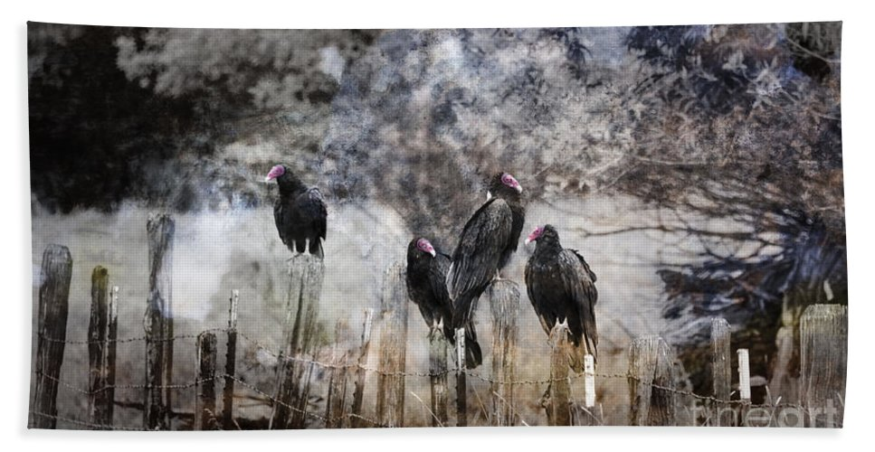 Vultures Beach Towel featuring the photograph The Hangout by Dianne Phelps
