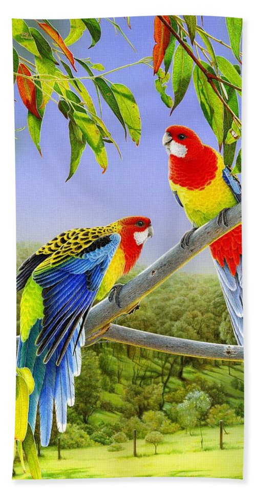 Rosellas Beach Towel featuring the painting The Happy Couple - Eastern Rosellas by Frances McMahon