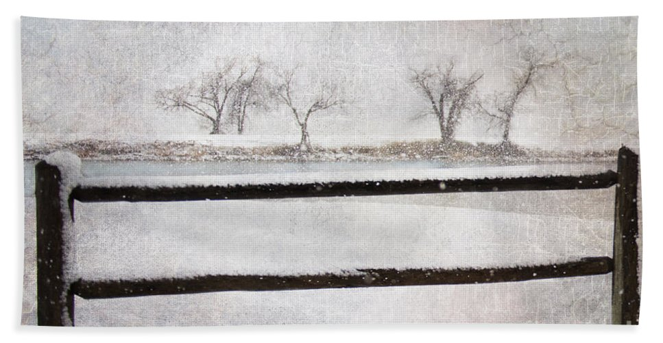Snow Beach Towel featuring the photograph The Joy Of Snow by Betty LaRue