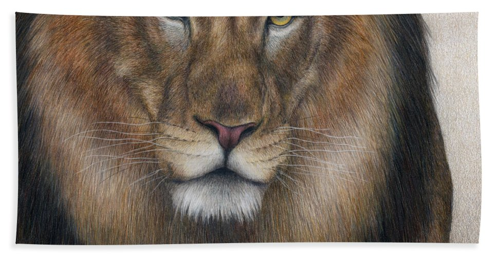African Lion. Male Lion Beach Towel featuring the painting The King Grows Weary by Pat Erickson