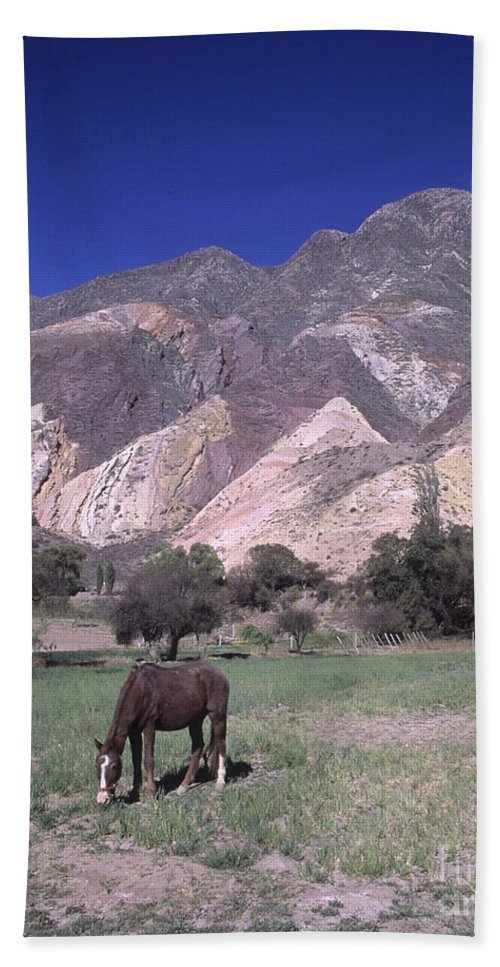 Argentina Beach Towel featuring the photograph The Painters Palette Jujuy Argentina by James Brunker