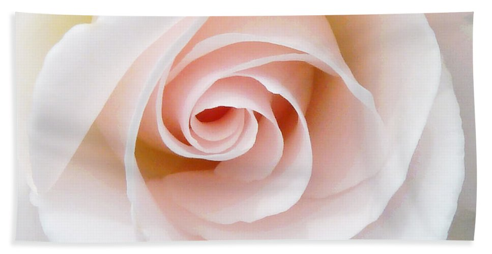 Pastel Beach Towel featuring the photograph The Pastel Rose by Steve Taylor